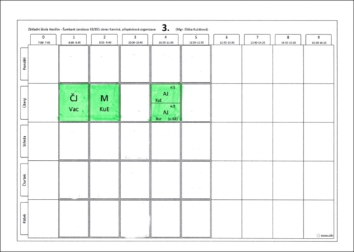 Online konzultace 3. třída