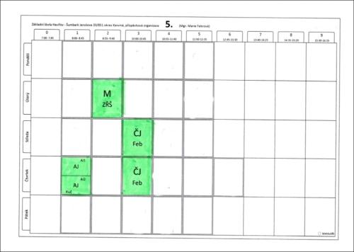Online konzultace 5. třída