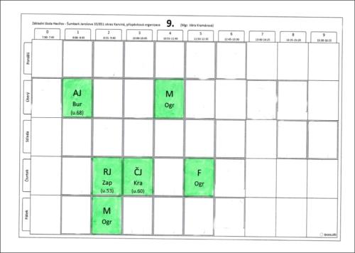 Online konzultace 9. třída
