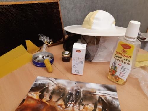 Včelí týden ve ŠD 02